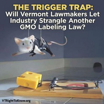 The Trigger Trap: Will Vermont Lawmakers Let Industry Strangle Another GMO Labeling Law?